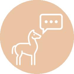 Icon Pferde verstehen