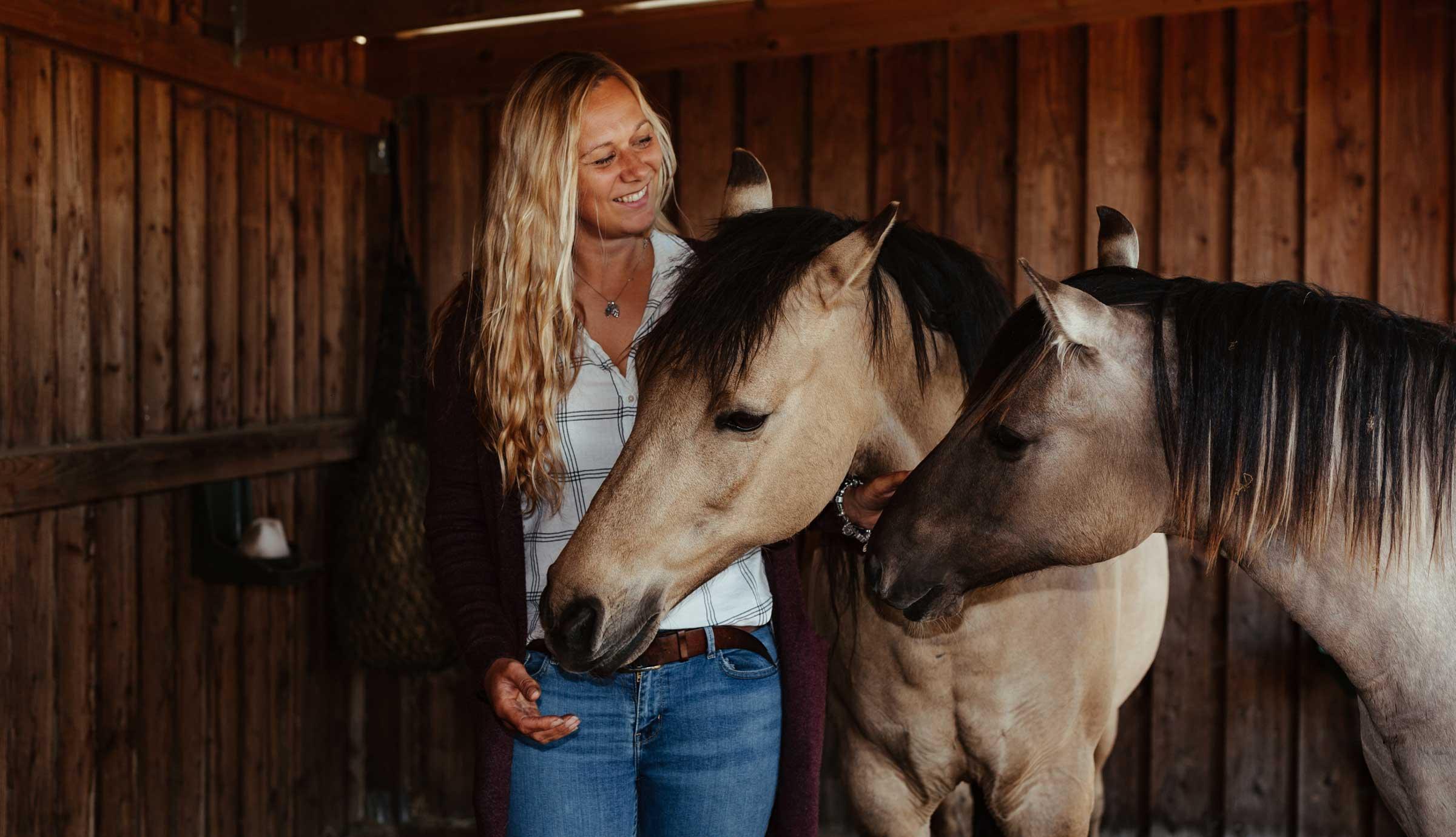 Angebot Pferdeflüstern