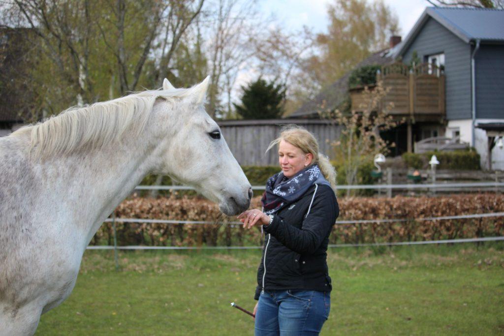 Weißes Pferd steht mit seiner Besitzerin auf der Koppel